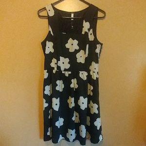 Kensie sz med black knee length dress